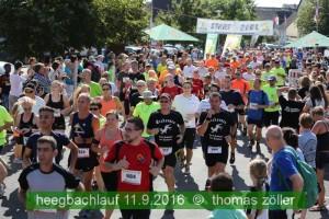 heegbachlauf_138